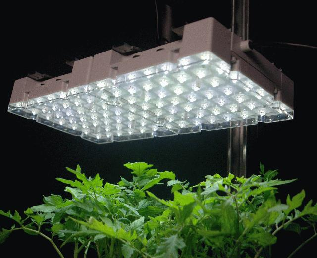 Fluorescent Grow Lights Cheap On Winlights Com Deluxe